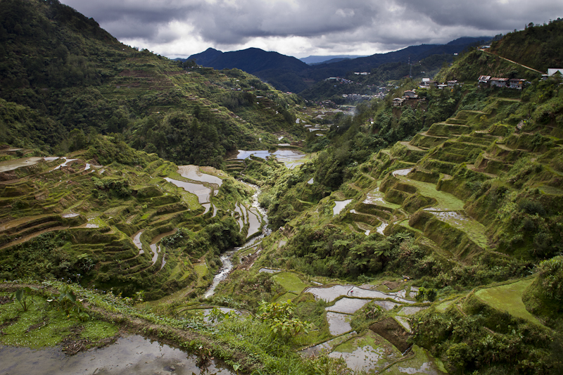 Looking down the terraces towards Banaue.