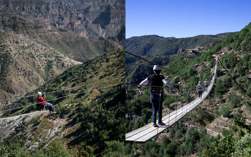 Ziplining over the canyon; Crossing a scary bridge