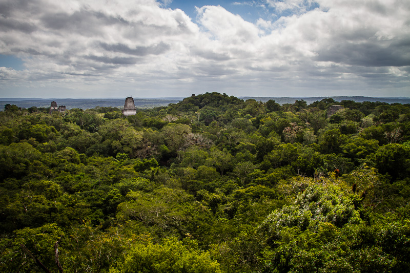 Tikal from the top. This should look filmilar to you Star Wars fans.